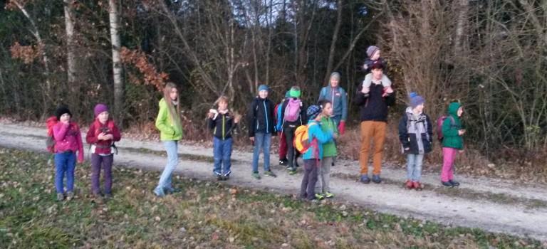 Wanderung im Staudacher Moos – 12.11.2015
